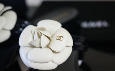 camelia-chanel-cute-designer-flower-white-Favim.com-68622