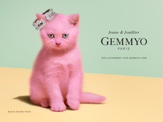 Gemmyo-Chaton