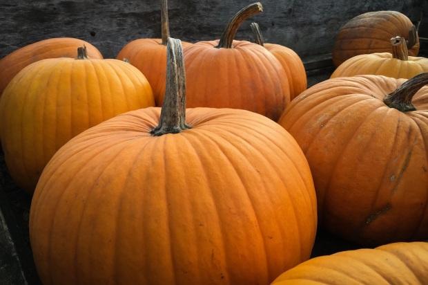 15-kifs-petits-plaisirs-automne-bright-pause-blog-2