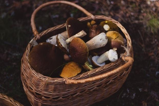 15-kifs-petits-plaisirs-automne-bright-pause-blog-3